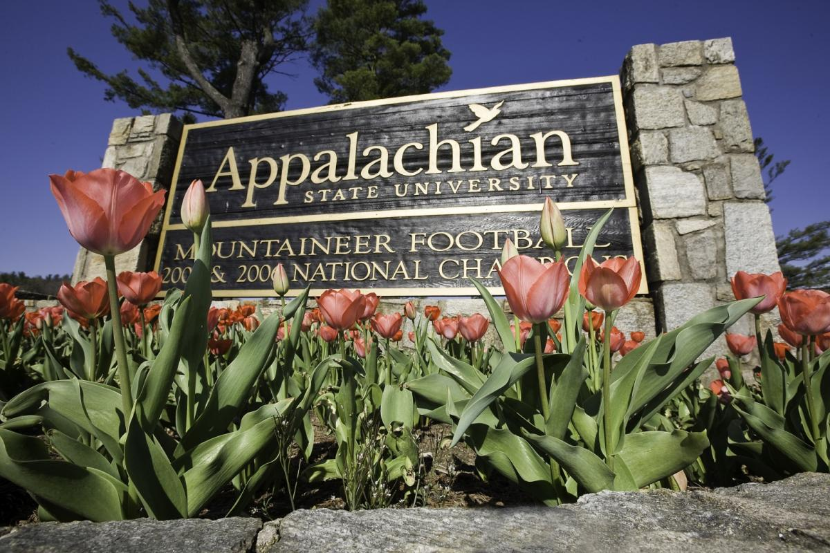 Appalachian Sign and Tulips